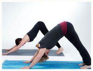 gopika-yoga-in-schwäbisch-hall - das Bild zeigt Michaela Langer und eine Freundin beim Yogaüben in der Hund-Position