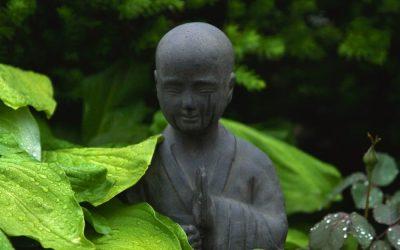 Namasté – (m)eine Lebensphilosophie