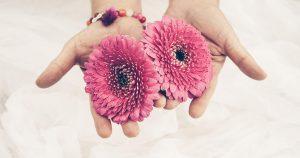 gopika-yoga-in-schwäbisch-hall - auf dem Bild sieht man zwei Hände, die 2 rosa Blüten halten