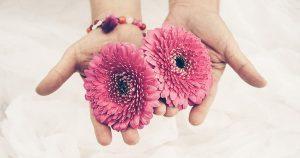 gopika-yoga-in-schwäbisch-hall - man sieht zwei nach oben geöffnete hände die zwei rosafarbene blüten halten