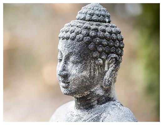 gopika-yoga-in-schwäbisch-hall - auf dem bild sieht man den kopf eines buddhas aus stein