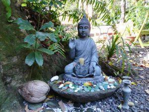 gopika-yoga-in-schwaebisch-hall-blog-metta-meditation2Das Bild zeigt eine Buddha - Statue auf LaReunion in St. Joseph im Garten